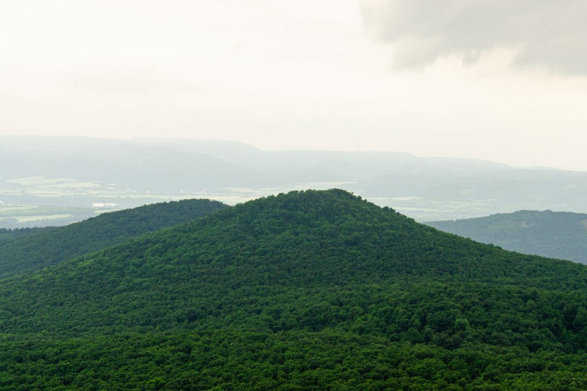 erdekesseg-vulkanok-borzsony-harmas-csucstura-10