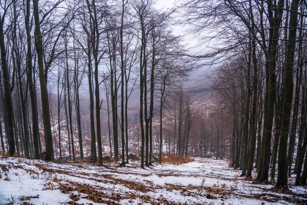 nagy-hideg-hegy-23