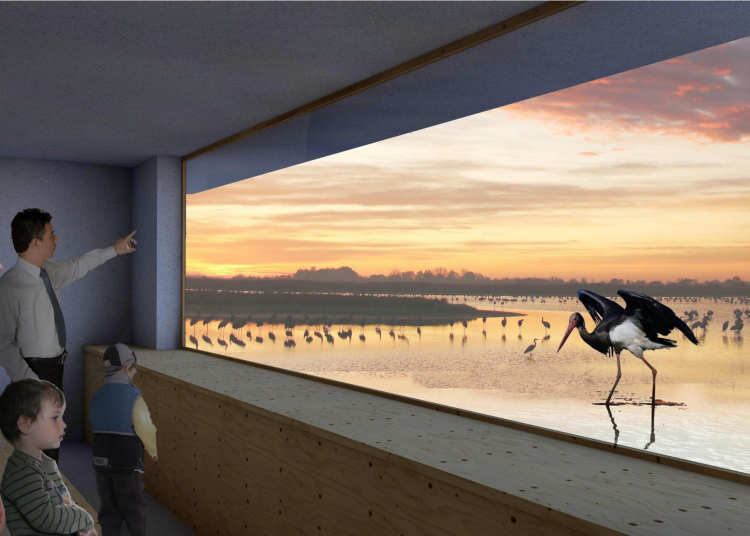 The world's first bird theater is being built in Hortobágy